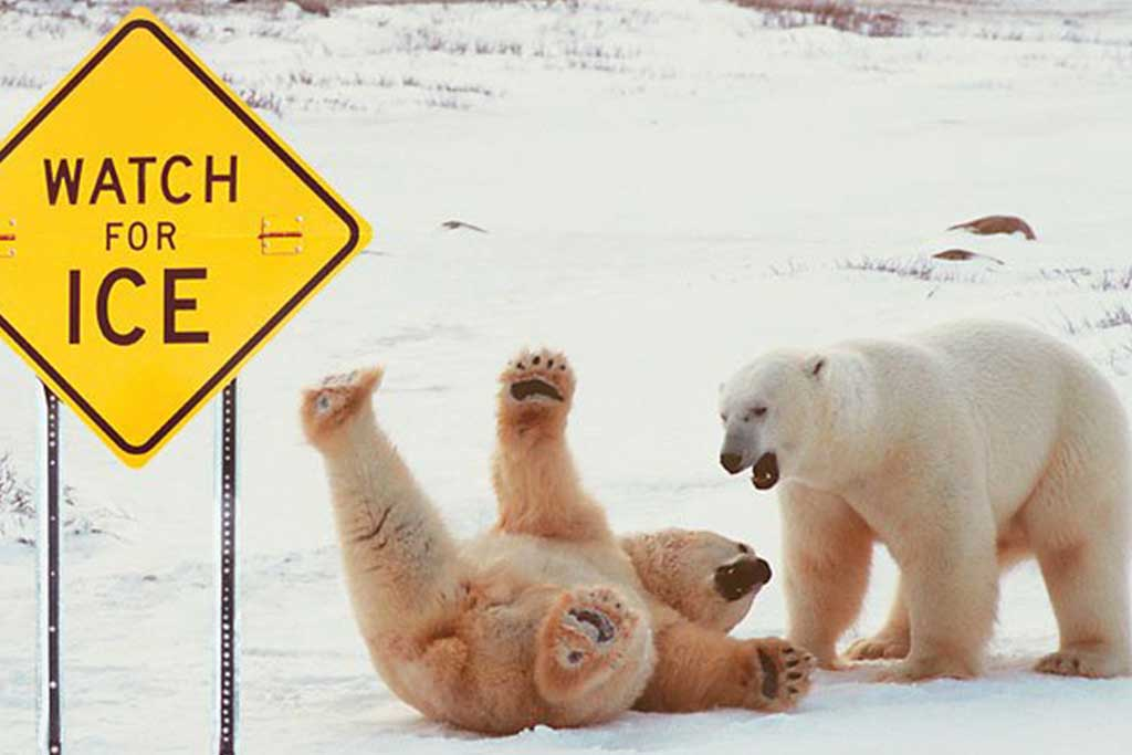 It's slippery out there!
