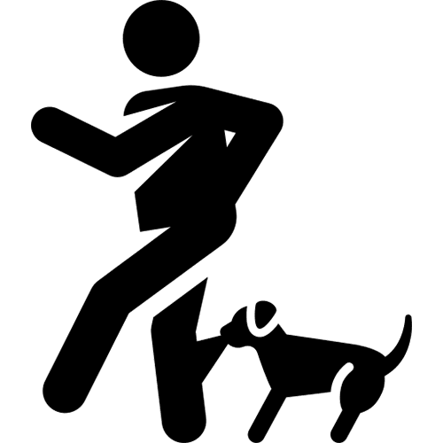 Dog Bite Lawyers Serving New York And Pennsylvania
